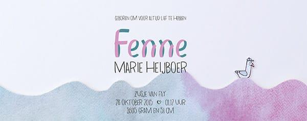 Geboortekaartje_Fenne_8